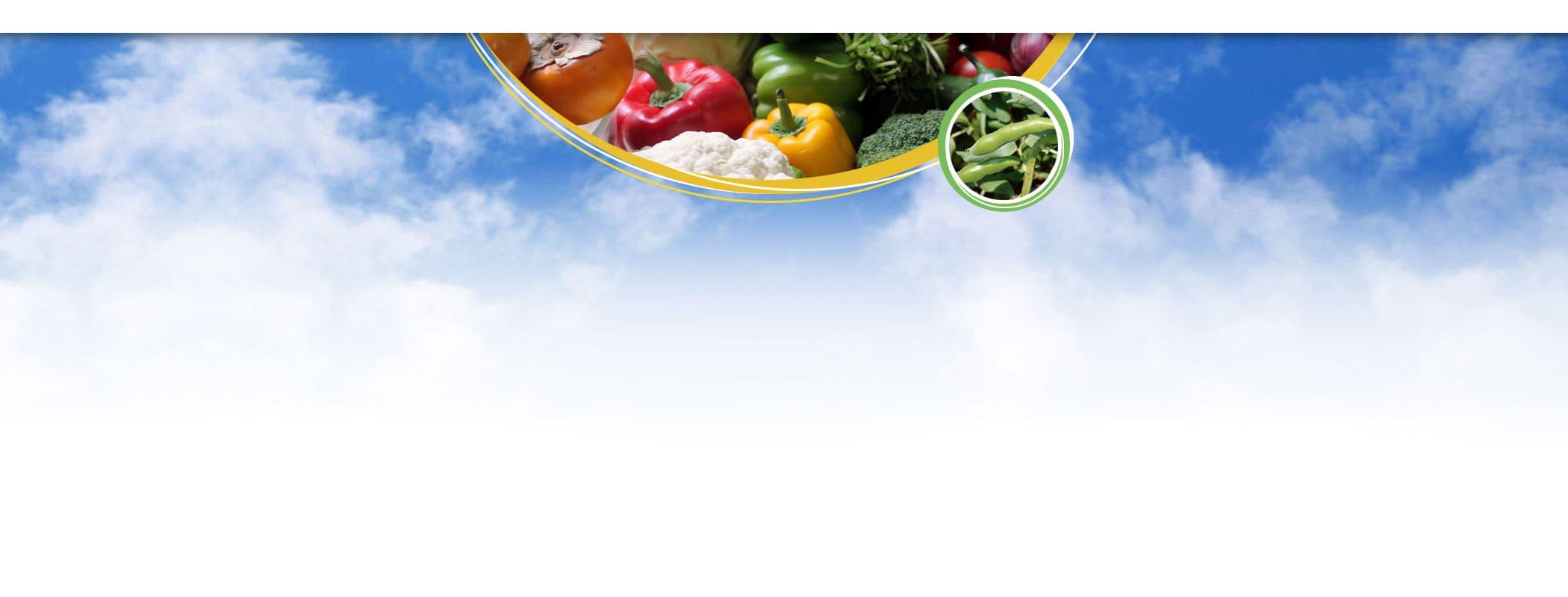 banner - warzywa