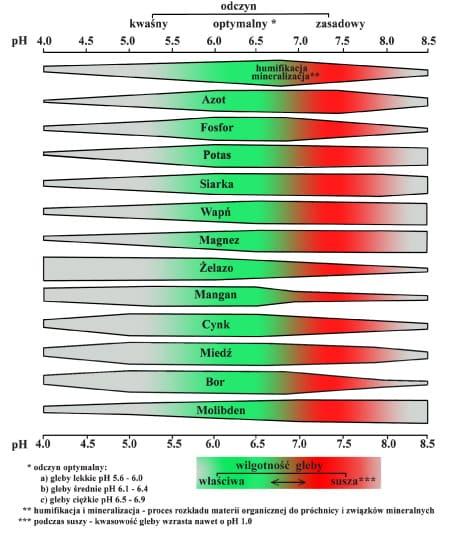 tabela odczynu pierwiastków