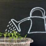mikroelementy 150x150 - Rola mikroelementów w uprawie roślin