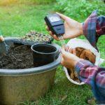czym jest kwasowosc gleby i na co wplywa 150x150 - Czym jest kwasowość gleby i na co wpływa?